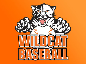 Verona Area High School Wildcats Baseball