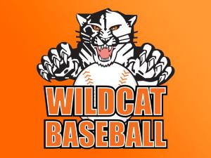 Verona Area High School Wildcats Baseball