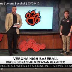 Wildcats on TV